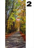 deurposter natuur herfstbos