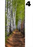 deurposter natuur berkenbos